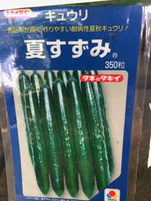 S-Photo-cucumber0.JPG