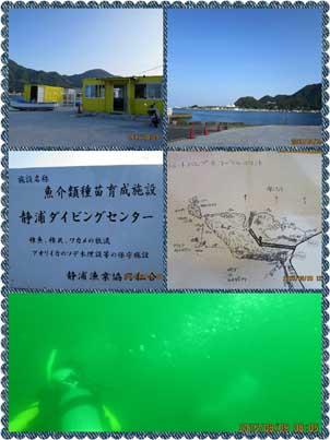S-SHIZUURA1.jpg
